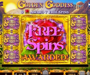 Playing with free spins